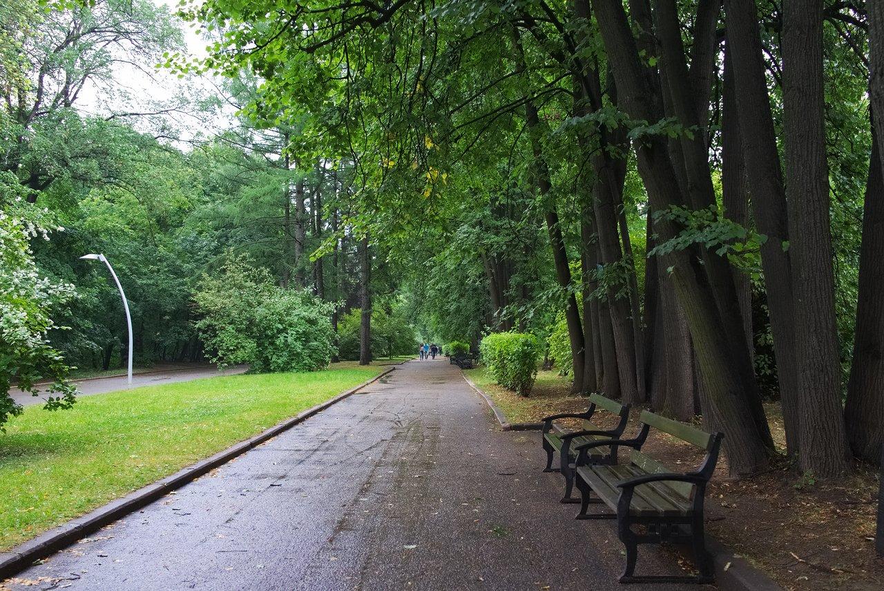 雀が丘近くの公園